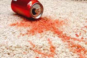 Ứng dụng chai tẩy điểm cho thảm 3M Scotchgard Spot Remover